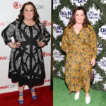 Melissa McCarthy, 48, Stuns After Dropping 75 Lbs. On Toronto Red Carpet — See Drop Dead Pic