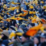Watch: How a Pittsburgh Steelers fan fight explains America