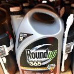 Controversial Roundup weed killer on trial again in US
