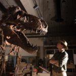 Paleontologists Identify the World's Largest Tyrannosaurus Rex