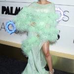 <div>Shailene Woodley, JLo, Rihanna & 36 More Stars Wearing Feathers</div>