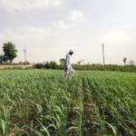 Commodity Traders Could Be aKey Beneficiary of Climate Change