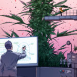 Inside the Search for a Better High