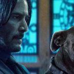 Friday Box Office: 'John Wick 3' Looking At a Killer $55 Million Debut