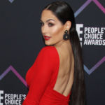 Nikki Bella Shows Off Hourglass Waist & Hair Down To Her Butt As She Celebrates 'Perfect' Day — Pic