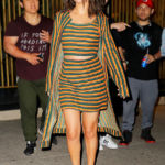 Stars In Stripes: Selena Gomez, Bella Hadid & More Rock The Patterned Look – See Pics