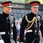 The Real Reason Behind William & Harry's Feud Has Nothing to Do with Meghan Markle