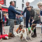 Prince William and Kate Middleton Meet Adorable Animal Friends in Cumbria